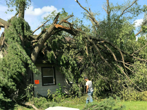 Picture of tree damage and a roof caved in by a fallen tree in Iowa City, IA